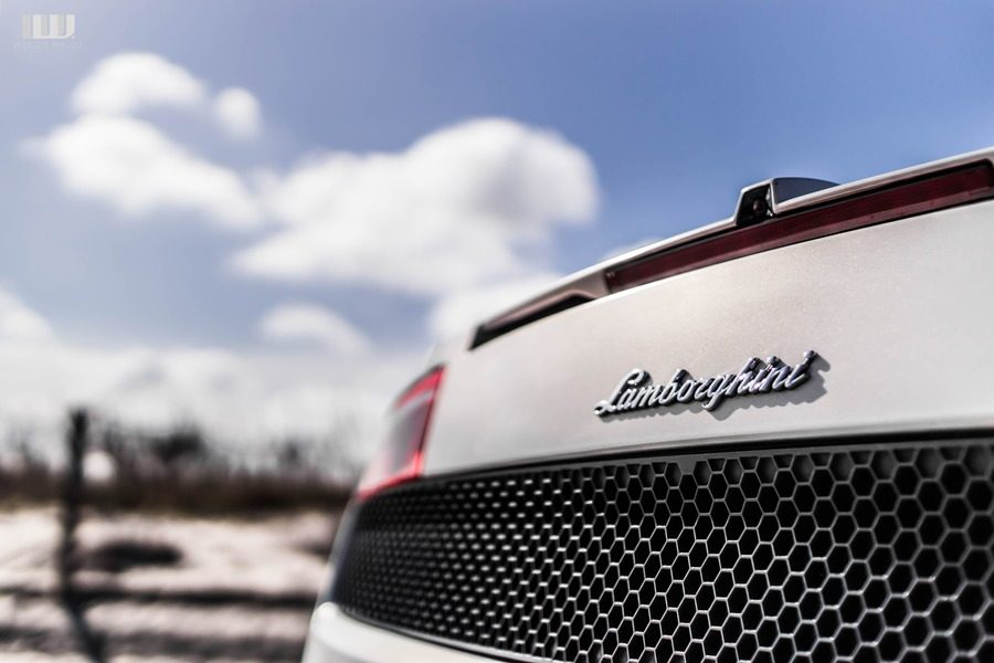 Lamborghini gallardo logo